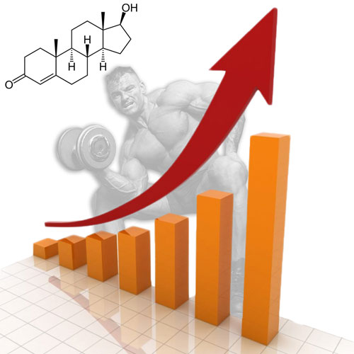 Increase Free Testosterone